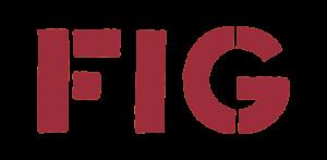 Filmski izziv Gorenjske - FIG